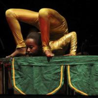 anconella2011Florilegio Cascine Fekat Circus 2011